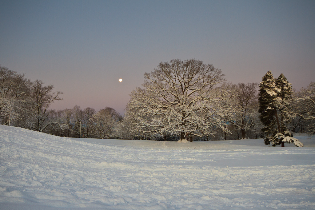 Winter Photography of the full moon over a snow covered Roger Williams Park, Providence Rhode Island. Taken by Rhode Island photographer Mike Dooley