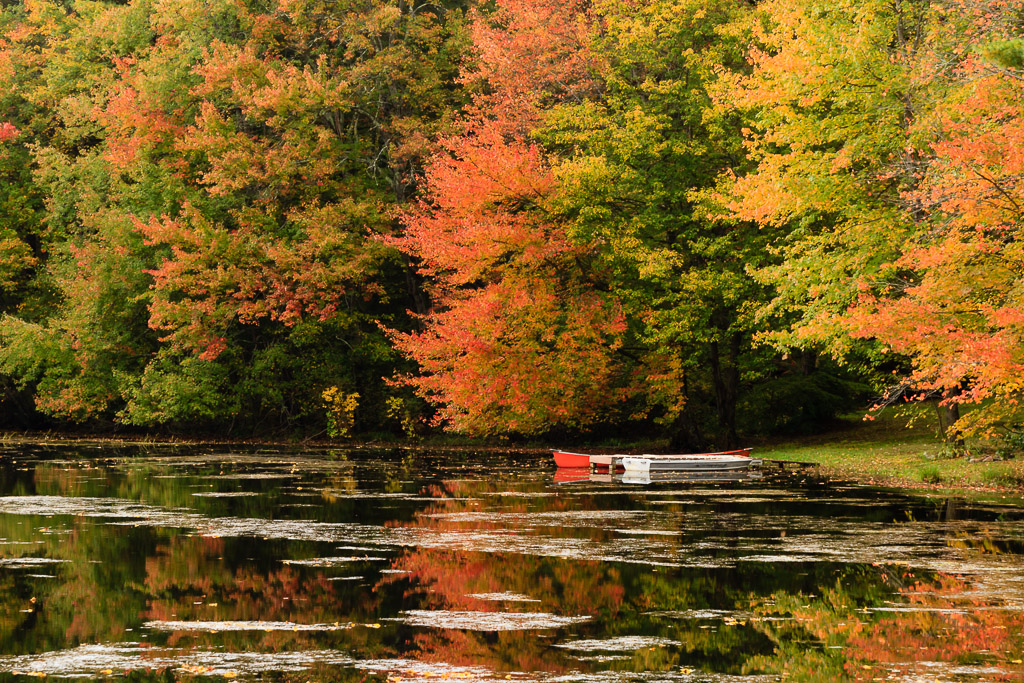 Fine Art Landscape Photograph of fall colors and a pair of boats docked at Steere Pond in Glocester, Rhode Island