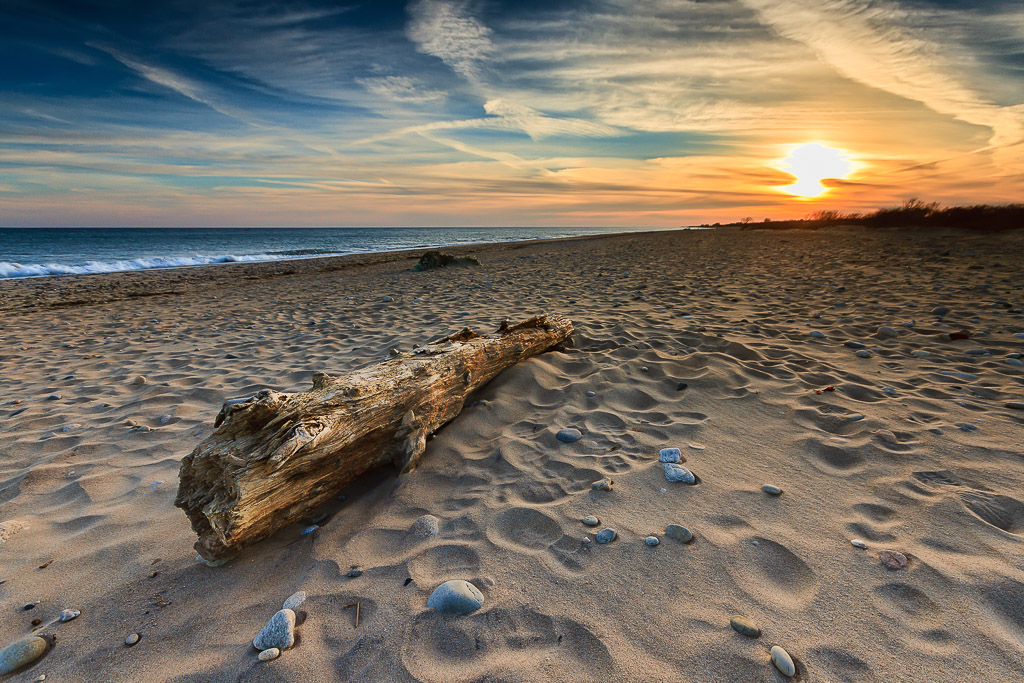 Driftwood-at-Moonstone-Beach-Mike-Dooley.jpg